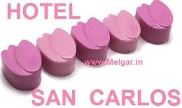 Hotel San Carlos En Melgar